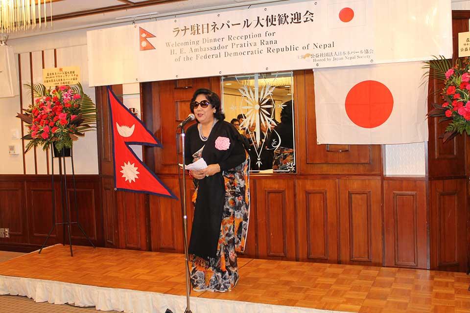 http://www.serenbutu.jp/news/IMG_8244.jpg